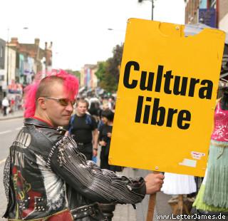 20061103210205-punk-cultura-libre.jpg