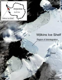 20081208202615-placa-hielo-wilkins-antartida.jpg