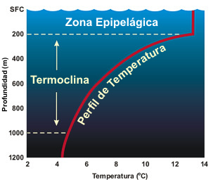 20140401032802-termoclina.jpg